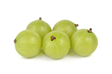 NEW ZEALAND GOOSEBERRIES